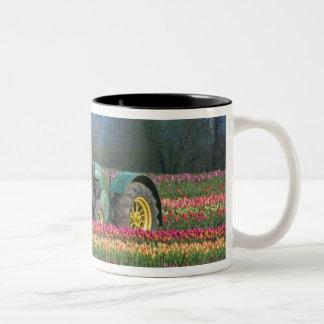 USA, Oregon, Woodburn, Wooden Shoe Tulip 2 Two-Tone Coffee Mug