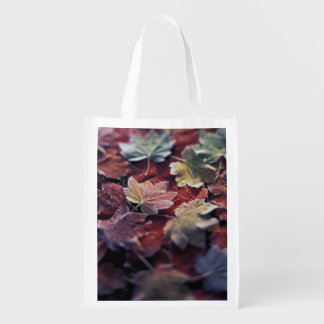 USA, Pacific Northwest. Japanese maple leaves Grocery Bag