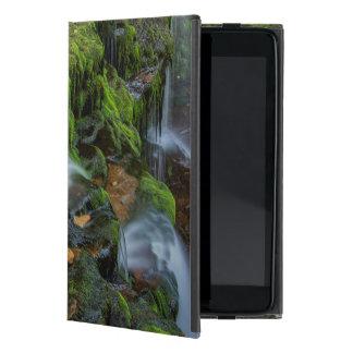 USA, Pennsylvania, Benton, Ricketts Glen State Cover For iPad Mini