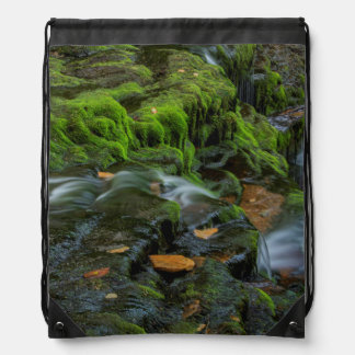 USA, Pennsylvania, Benton, Ricketts Glen State Drawstring Bag