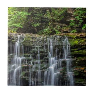 USA, Pennsylvania, Benton. Waterfall In Ricketts Tile