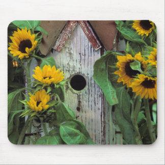 USA, Pennsylvania. Birdhouse and garden Mouse Pad