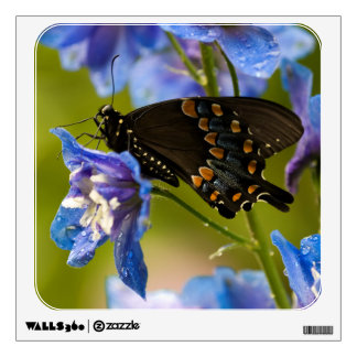 USA, Pennsylvania. Close-up of butterfly Wall Sticker