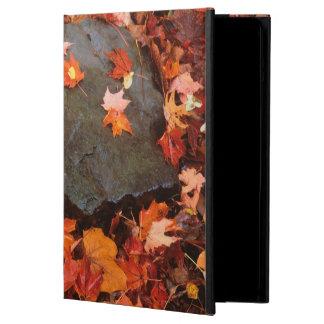 USA, Pennsylvania. Close-Up Of Forest Floor iPad Air Case