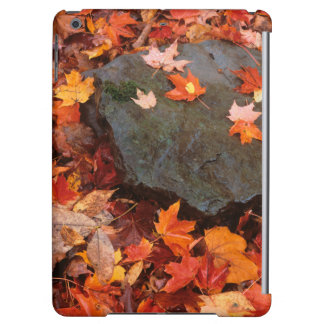 USA, Pennsylvania. Close-Up Of Forest Floor iPad Air Cover