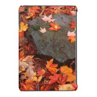 USA, Pennsylvania. Close-Up Of Forest Floor iPad Mini Retina Case