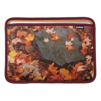USA, Pennsylvania. Close-Up Of Forest Floor MacBook Air Sleeves