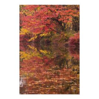 USA, Pennsylvania, Delaware Water Gap National 2 Photo Print