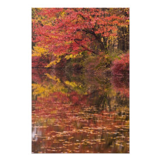 USA, Pennsylvania, Delaware Water Gap National 2 Photographic Print