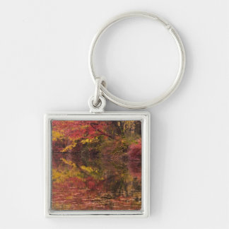 USA, Pennsylvania, Delaware Water Gap National Silver-Colored Square Keychain