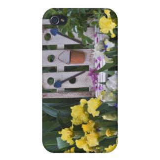USA, Pennsylvania. Garden irises grow around Case For iPhone 4