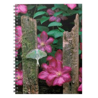 USA, Pennsylvania. Luna moth on fence Spiral Notebook