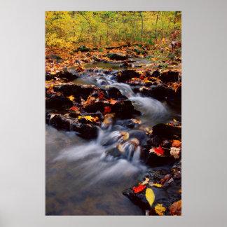 USA, Pennsylvania, Pocono Mountains 2 Poster