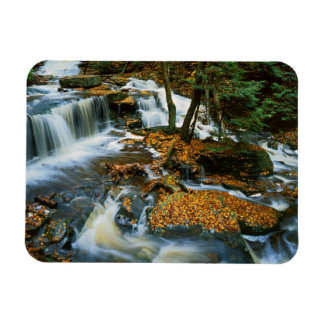 USA, Pennsylvania, Ricketts Glen State Park Magnet