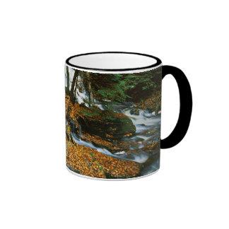 USA, Pennsylvania, Ricketts Glen State Park Ringer Mug