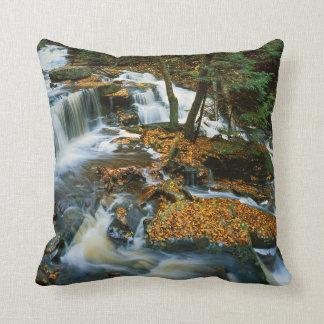 USA, Pennsylvania, Ricketts Glen State Park Throw Pillow