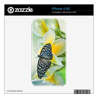 USA, Pennsylvania. Swallowtail butterfly iPhone 4 Decal