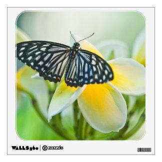 USA, Pennsylvania. Swallowtail butterfly Wall Sticker