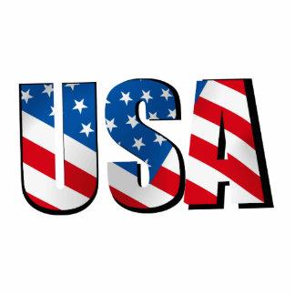 USA STANDING PHOTO SCULPTURE