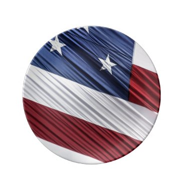 USA Themed USA Red, White and Blue American Patriotic Flag Dinner Plate
