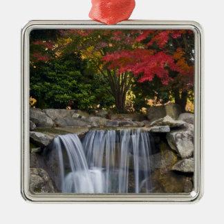 USA, Redmond, Washington. Fall color in a park. Metal Ornament