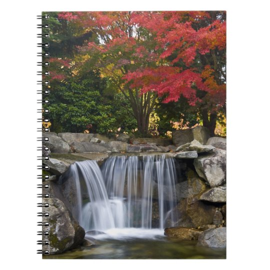 USA, Redmond, Washington. Fall color in a park. Spiral Notebook