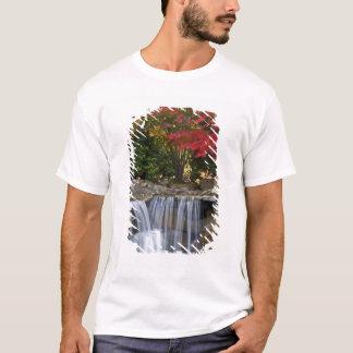USA, Redmond, Washington. Fall color in a park. T-Shirt