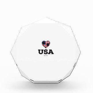 USA Soccer Shirt 2016 Acrylic Award