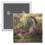 USA, South Carolina, Charleston. Cypress Trees 2 Pinback Button