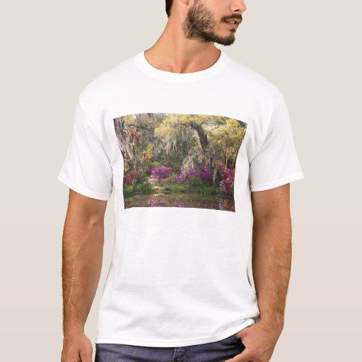 USA, South Carolina, Charleston. Cypress Trees 2 T-Shirt