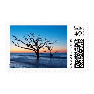 USA, South Carolina, Edisto Island, Botany Bay Postage Stamps
