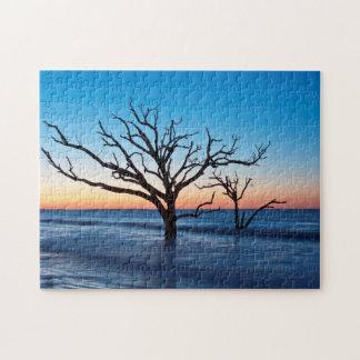 USA, South Carolina, Edisto Island, Botany Bay Puzzle