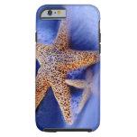 USA, South Carolina, Hilton Head Island. Two Tough iPhone 6 Case