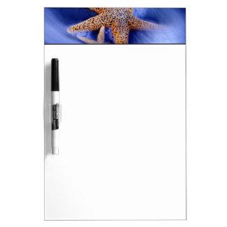 USA, South Carolina, Hilton Head Island. Two Dry-Erase Board