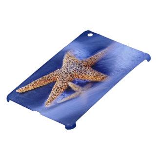 USA, South Carolina, Hilton Head Island. Two iPad Mini Cases