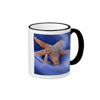 USA, South Carolina, Hilton Head Island. Two Coffee Mugs
