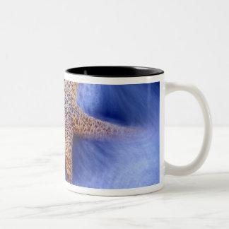USA, South Carolina, Hilton Head Island. Two Mug