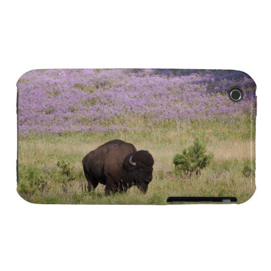 USA, South Dakota, American bison (Bison bison) iPhone 3 Cover