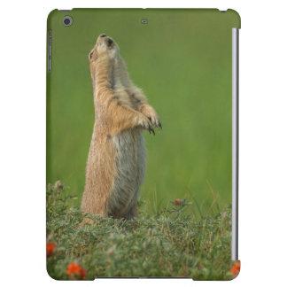USA, South Dakota, Custer State Park iPad Air Covers
