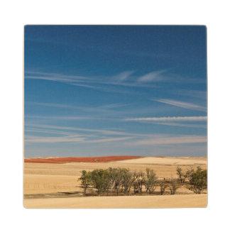 USA, South Dakota, Murdo, Prairie Landscape Wood Coaster
