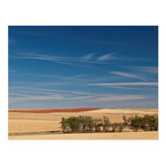 USA, South Dakota, Murdo, Prairie Landscape Postcard