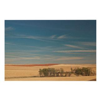 USA, South Dakota, Murdo, Prairie Landscape Wood Print