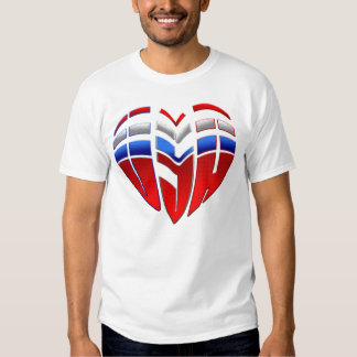 USA sports men and womens united states flag USA Tshirt