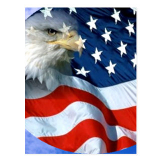USA Spread it s Love_ Postcard