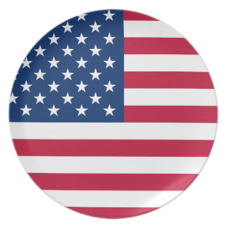 USA Star American Flag Plate