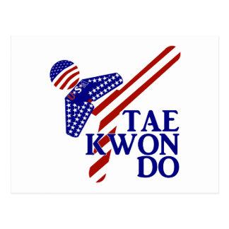 USA Tae Kwon-do Kick (1) Postcard