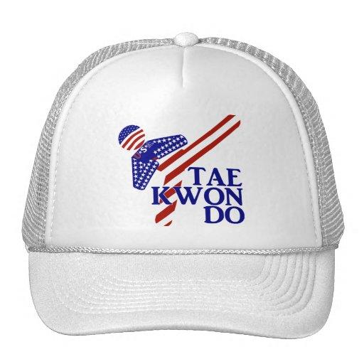 USA Taekwondo Kick (1) Mesh Hats
