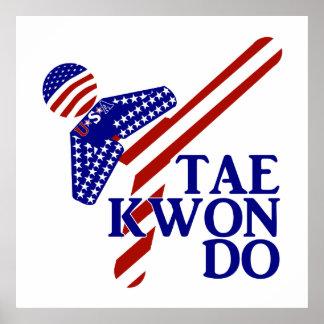 USA Taekwondo Kick (1) Poster