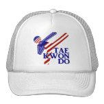 USA Taekwondo Kick (2) Hat