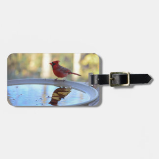 USA, Tennessee, Athens. Backyard Bird Bath 2 Bag Tag